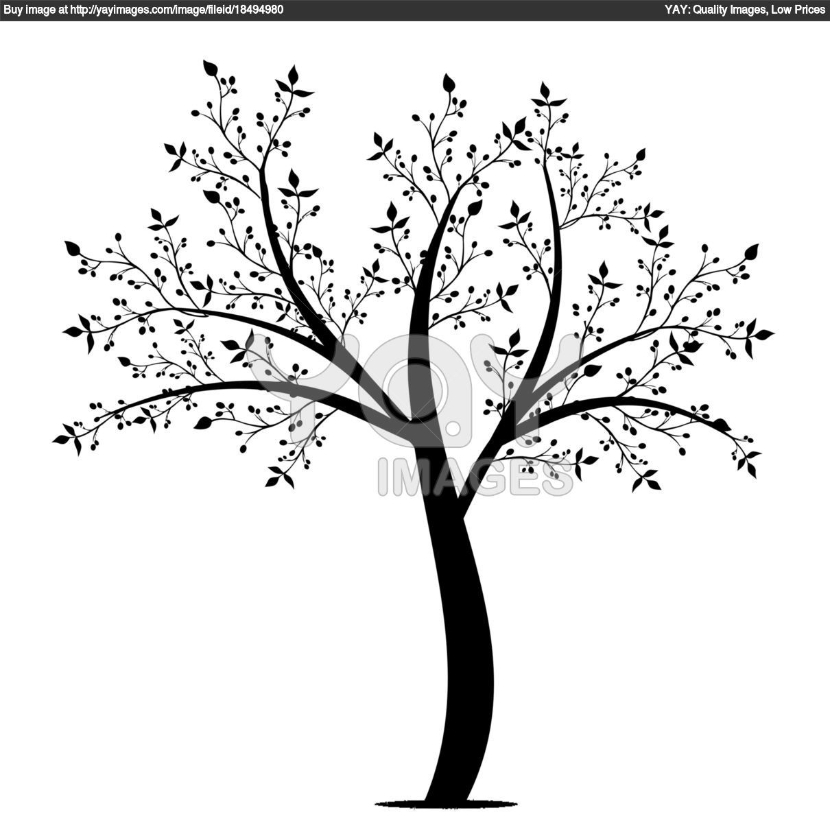 free coloring pages tree limb olive color desenhos para