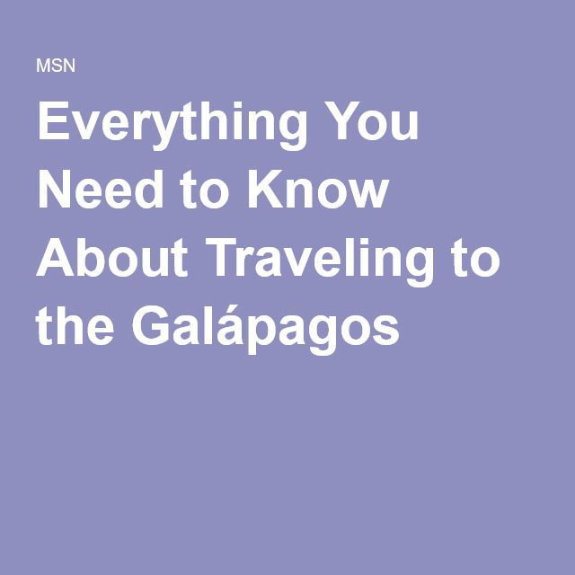 Everything You Need to Know About Traveling to the Galápagos