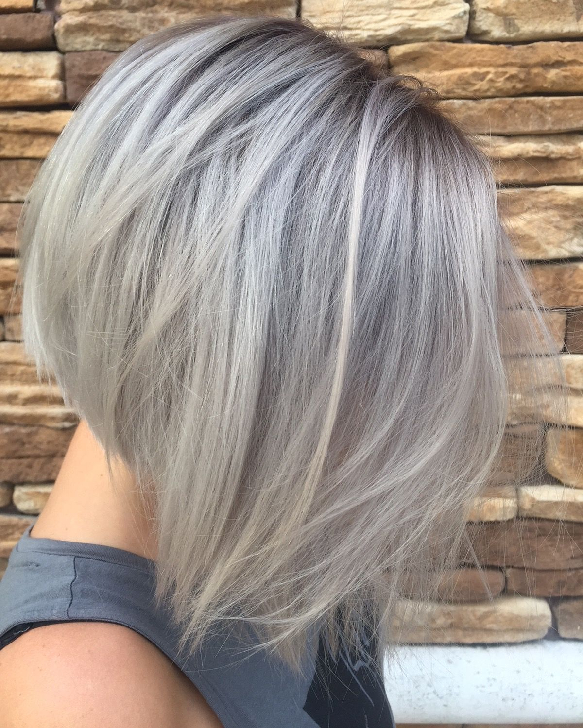 Greyhair Grayhair Shadowroot Bob Aline Shorthair
