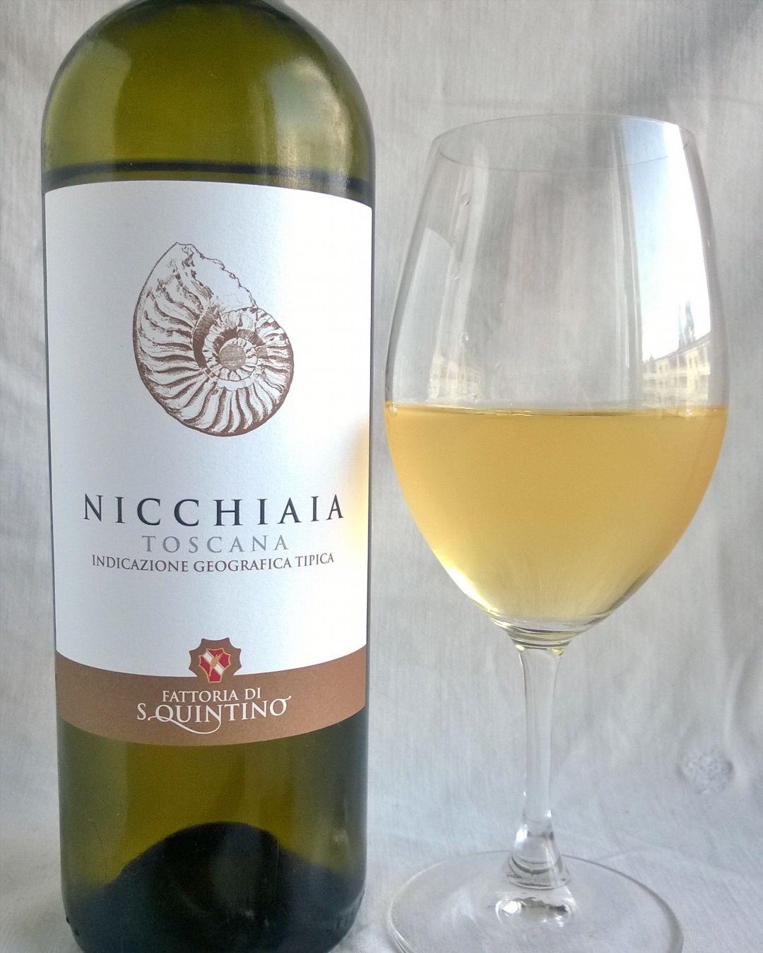 IGT Toscano Nicchiaia. Hurmaava Italialainen valkoviini Fattoria di Sanquintinolta jota olen saanut maistaa ensimmäisenä pohjoismaissa.  @fattoriasanquintino #toscano#nicchiaia#trebbianotoscana#trebbiano#malvasia#italianwine#whitewine#tuscany#valkoviini#lasissa #winetasting#sommelier