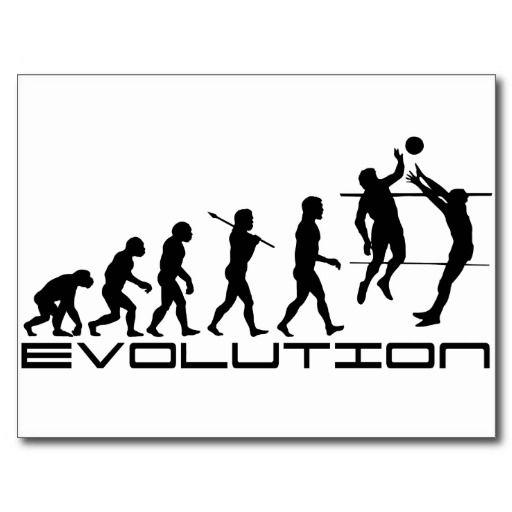 Volleyball Evolution Postcard Zazzle Com In 2020 Volleyball Volleyball Quotes Evolution