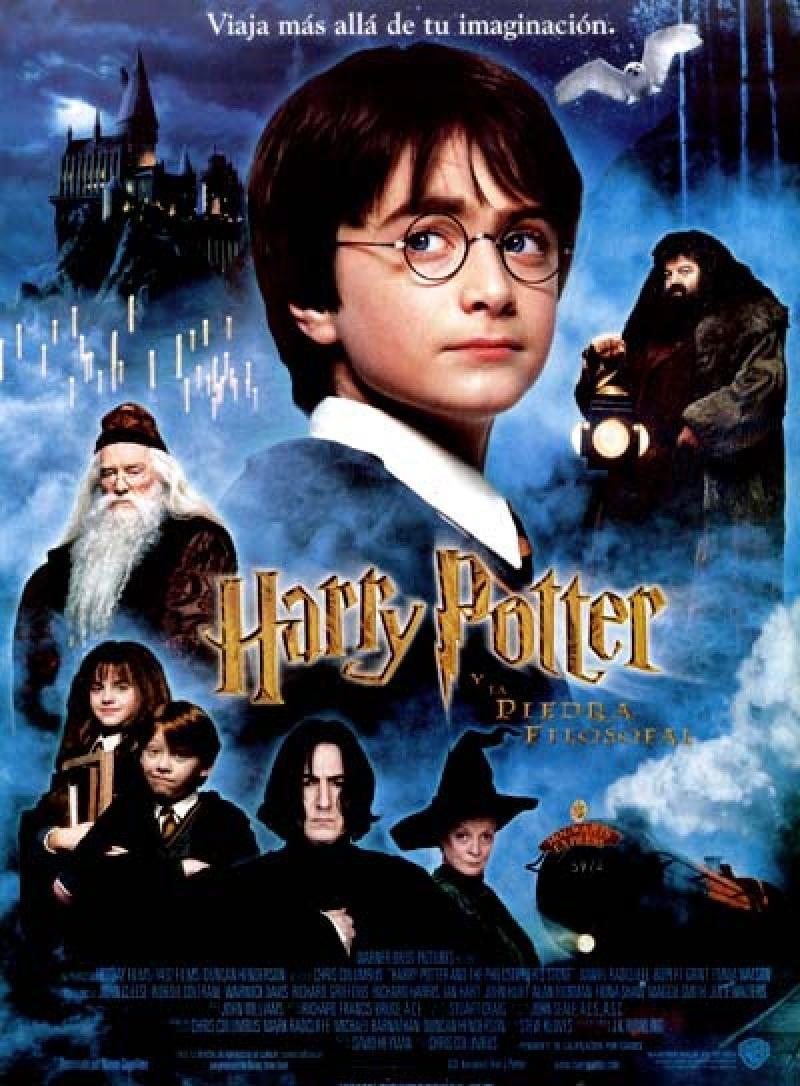 Harry Potter Y La Piedra Filosofal Harry Potter Movies Harry Potter Film The Sorcerer S Stone