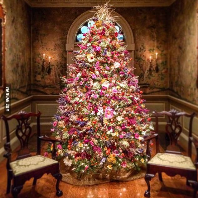 A Christmas tree made only of dried flowers