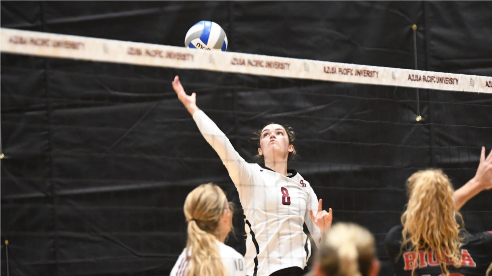 Eagles Cornered By Cougars Azusa Pacific University Athlete Women Volleyball