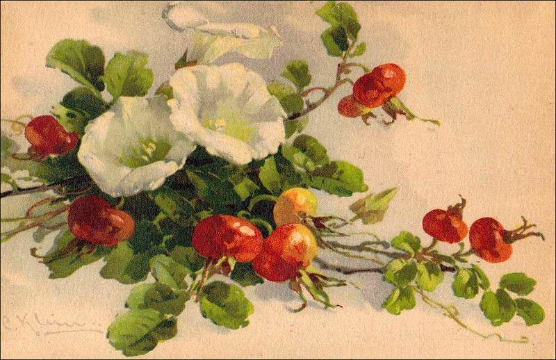 Картинки для декупажа цветы шиповника
