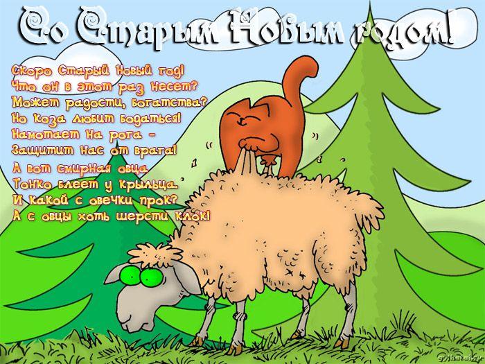 Украина любовь, смешные картинки старый новый год 2017