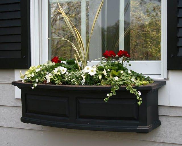August Fields Window Box Flowers Metal Window Boxes Window Box