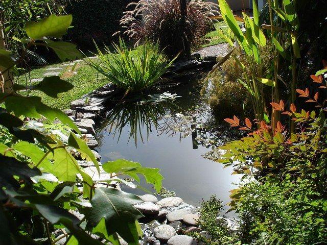 ARTE Y JARDINERÍA DISEÑO DE JARDINES: Estanques acuáticos | Flores y ...