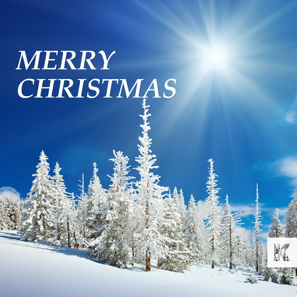 MERRY CHRISTMAS We'd like to wish all our friends and