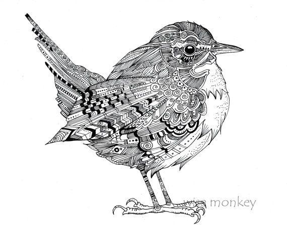 wren illustration pen and ink