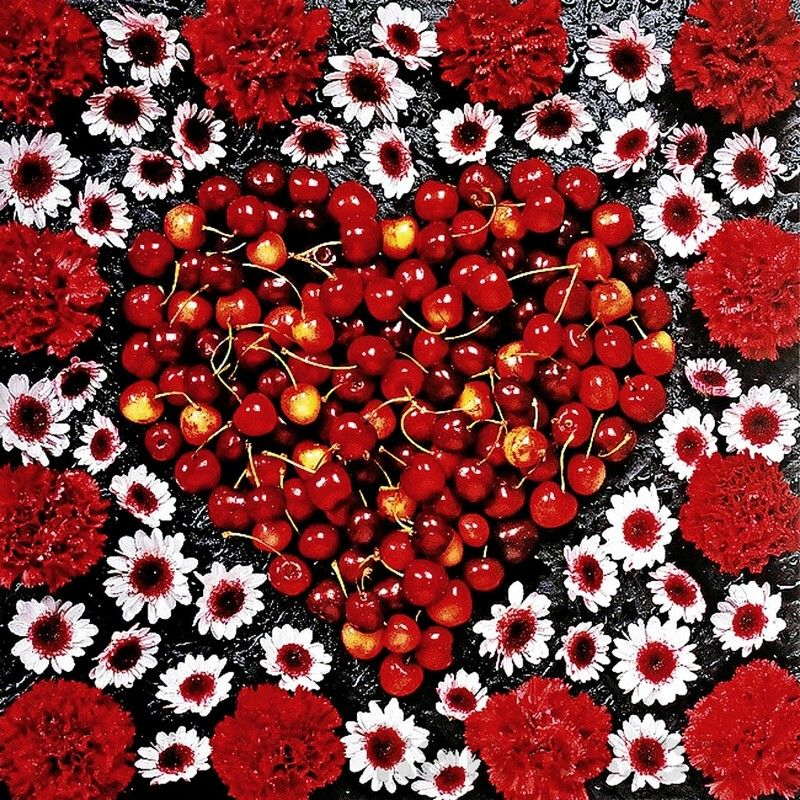 Guido Cecere (b.1947) — Calendar 'Fruits & Flowers', 2013 (800x800)