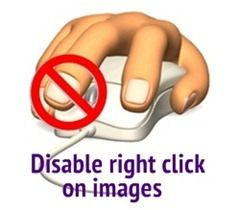 Disable right click on images, could be useful for pics on blog sometimes