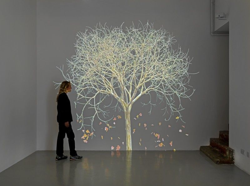 Check out the video of this and some of her other tree videos!  http://jsteinkamp.com/  Jennifer Steinkamp @ at greengrassi, London.