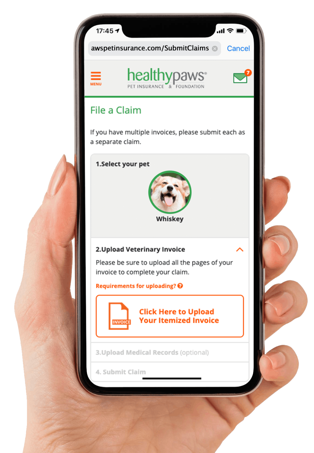 Pet Insurance For Dogs Cats Rated Best Plan Healthy Paws In 2020 Pet Insurance For Dogs Dog Facts Health Pet Insurance