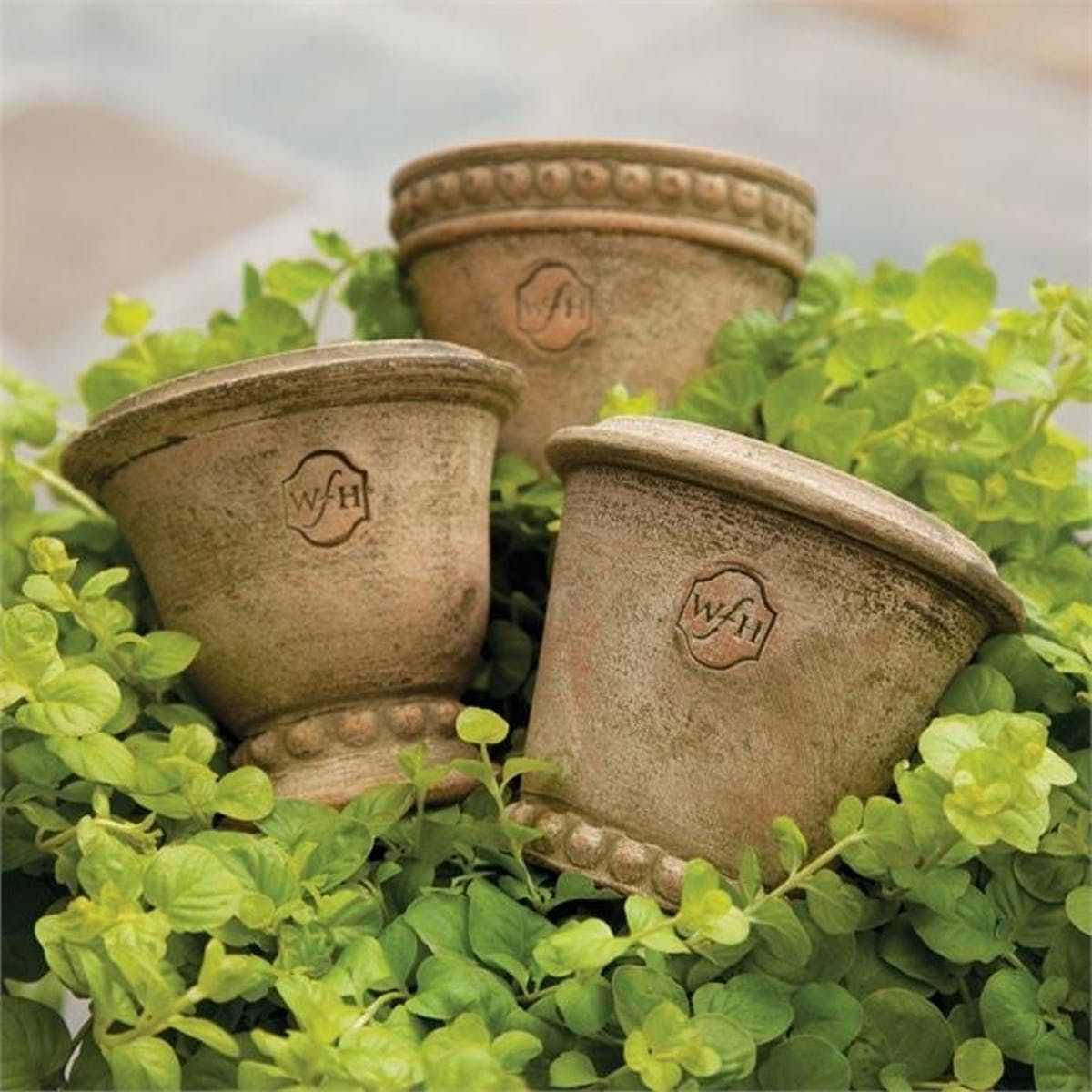 Wakefield Handmade Mini Pots By Napa Home & Garden in 2020