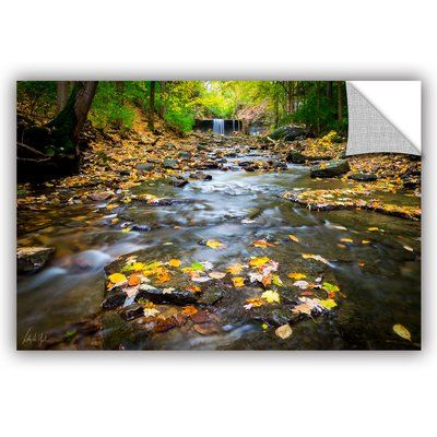 "ArtWall Cody York Indian Run Falls Wall Mural Size: 16"" H x 24"" W x 0.1"" D"