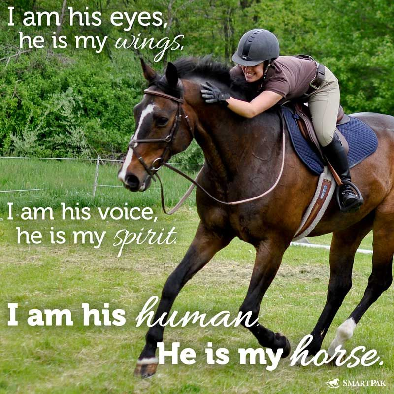 Hope your weekend is full of great rides! Horses, Horse