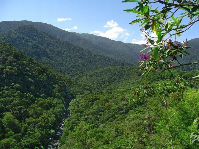 (flona-do-jamanxiim) Como queria a WWF Brasil, Temer veta MPs que poderiam reduzir áreas de preservação ambiental