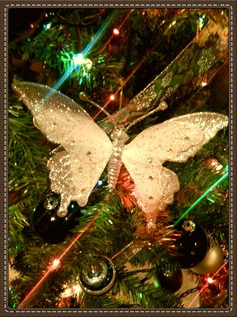 Silver butterfly ornament