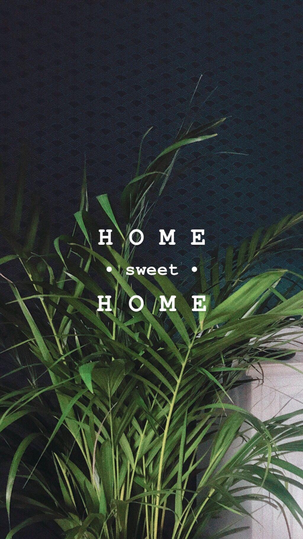 Best 12 plant story ideen ich Plants just Wanne be friends