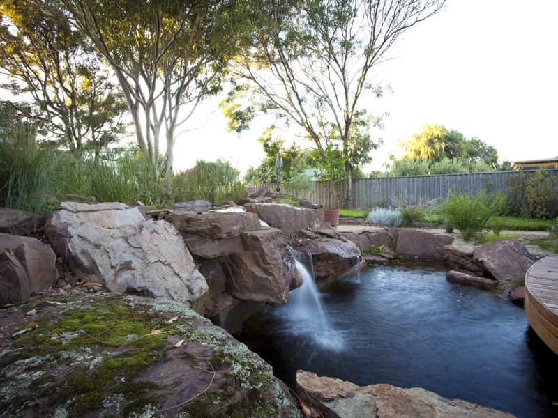 Phillip johnson billabong pool home and garden for Natural ponds and gardens