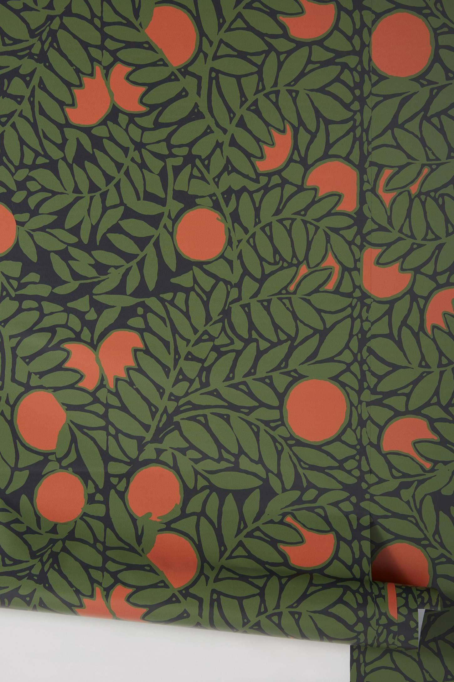 Orange Grove Wallpaper Orange Grove Orange Accent Walls Orange Wallpaper