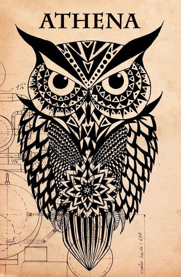 Owl Canvas Print By Mark Ashkenazi Trojan War Athena