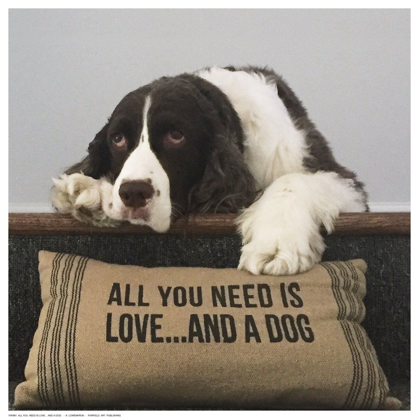 All You Need Is Love And A Dog Dog Best Friend All You Need