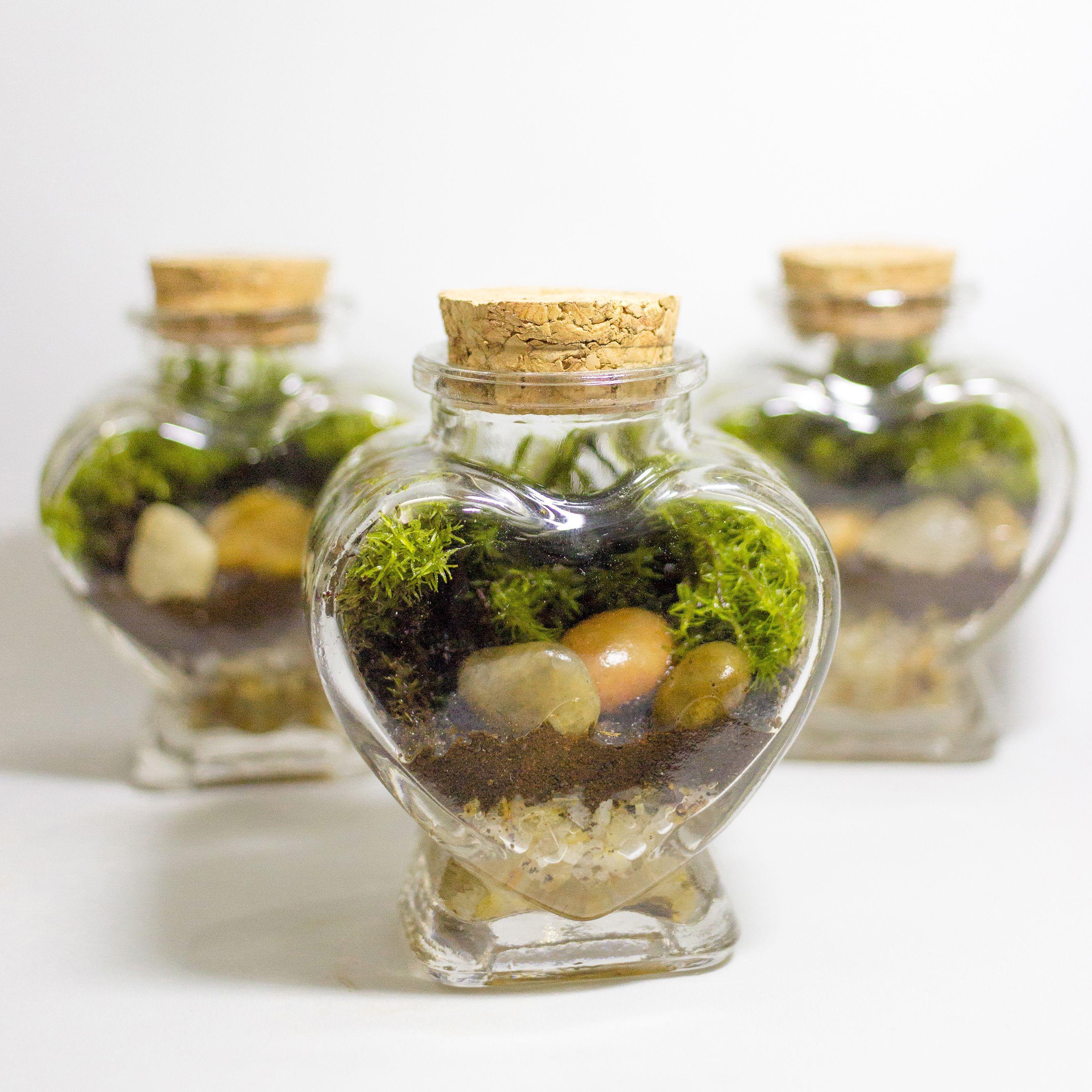 Mini terrario lembrancinha
