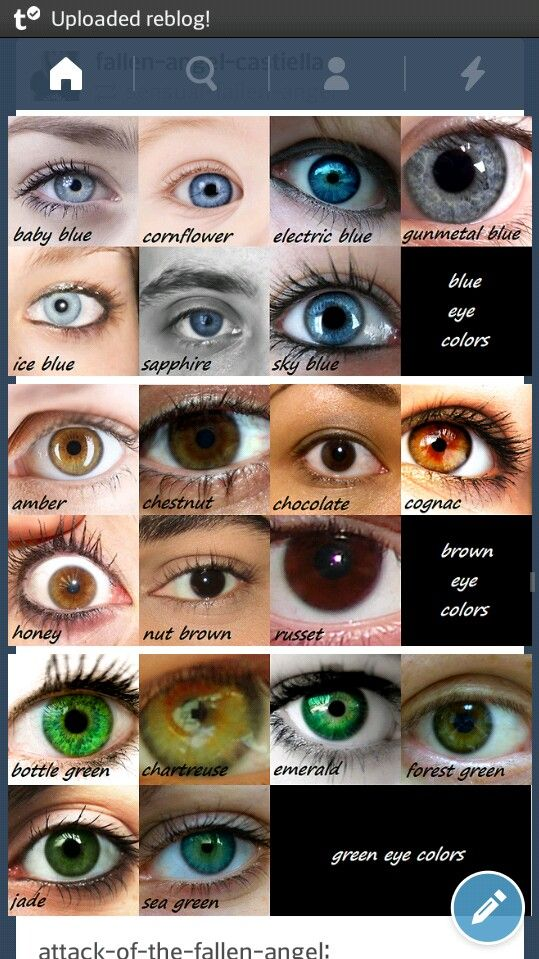 What Color Are My Eyes Chart Gubikabidingtruthministry