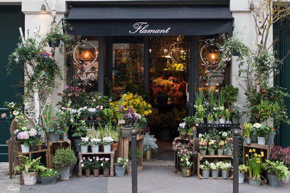 Paris Photography Left Bank Flower Shop Paris Bathroom Art