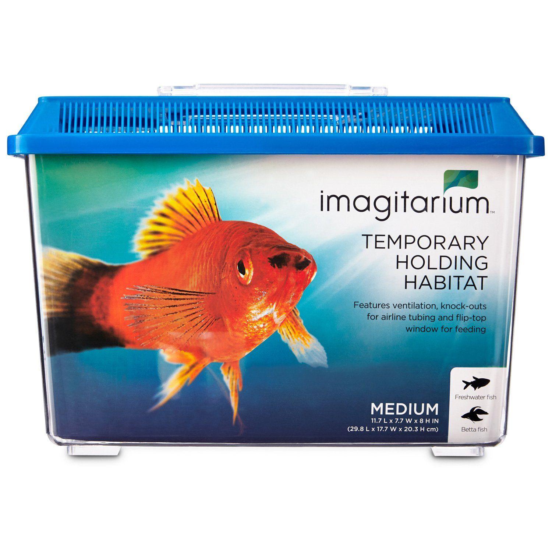 Freshwater aquarium fish water change - Fish For Water Changes