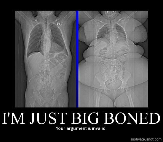 I'm just big boned Your argument is invalid