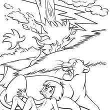 The Jungle Book 47 - Coloring page - DISNEY coloring pages - The ...