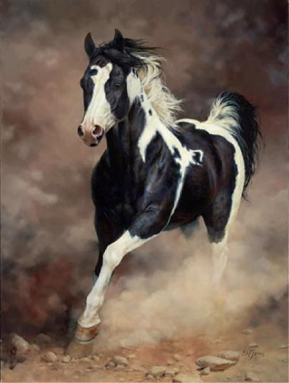 """My horse's feet are as swift as rolling thunder He carries me away from all my fears And when the world threatens to fall asunder His mane is there to wipe away my tears."" ~Bonnie Lewis"