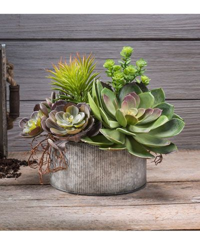 Photo of Succulent Obsession Artificial Foliage Plante