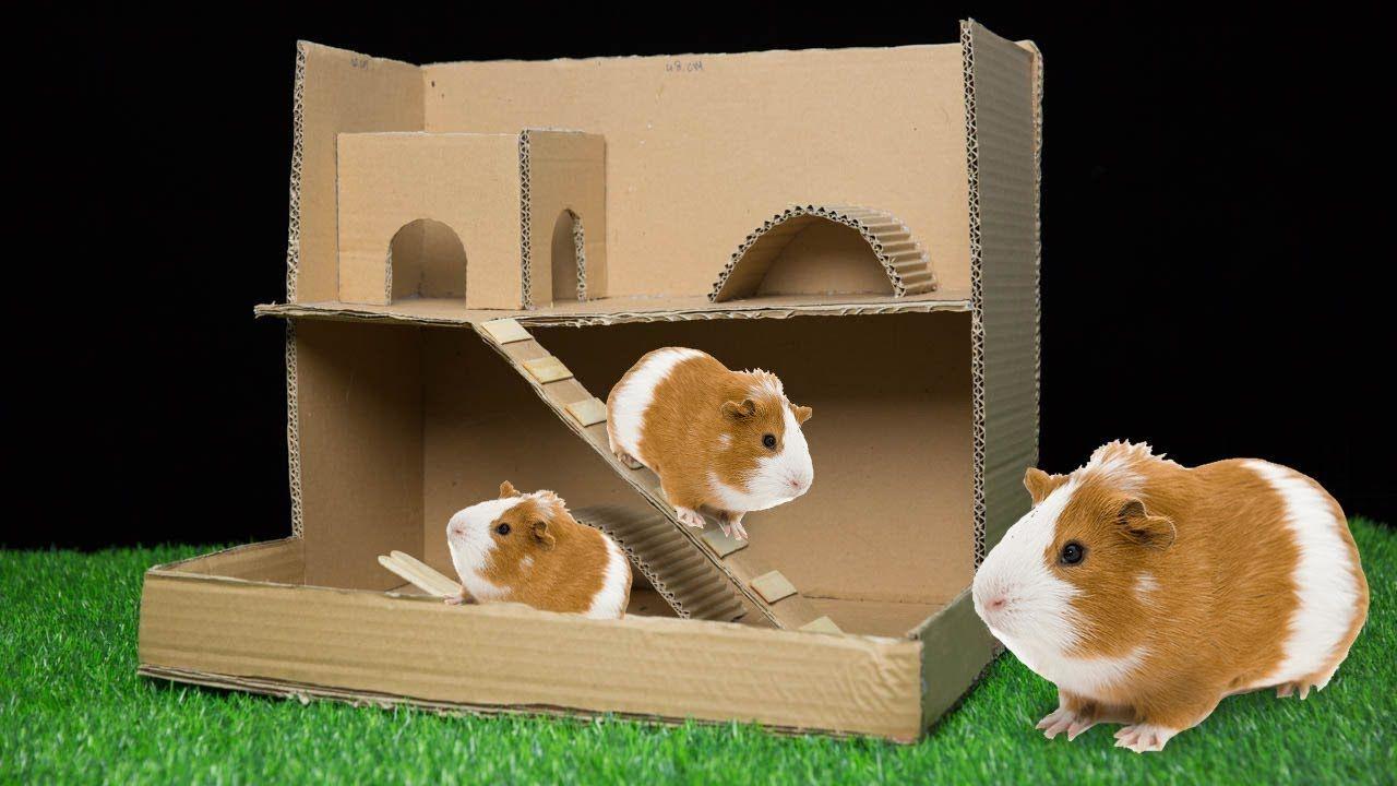 Pin On Pets House Villa Diy