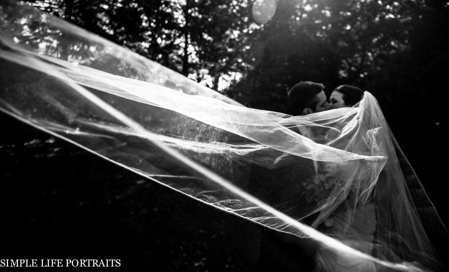2013 © dmpettaw