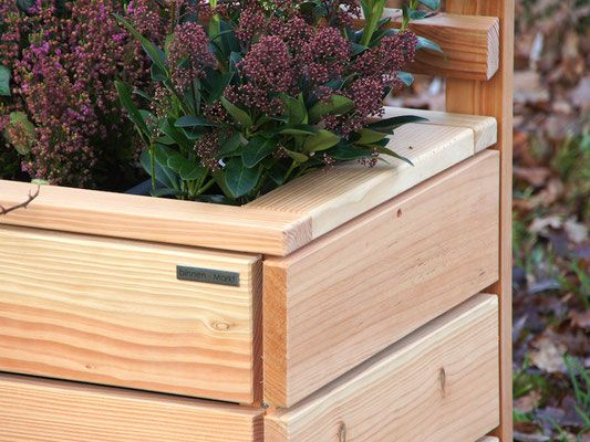 pflanzkasten mit rankgitter spalier detail rankgitter pinterest rankgitter. Black Bedroom Furniture Sets. Home Design Ideas