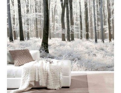 White Forest 12 X 8 3 66m X 2 44m En 2019 Murals Of