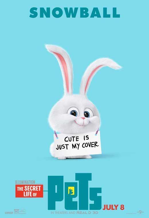 The Secret Life Of Pets 2016 27x40 Movie Poster การ ต นตลก ม มตลกๆ ส ตว