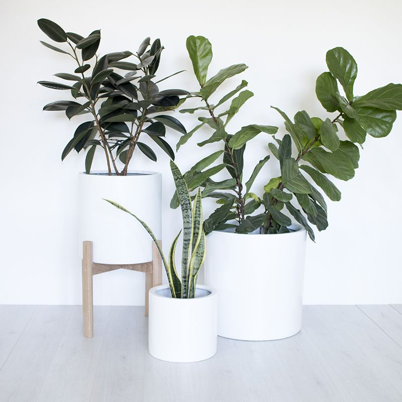 Indoor Outdoor Planter Pot Black Or White