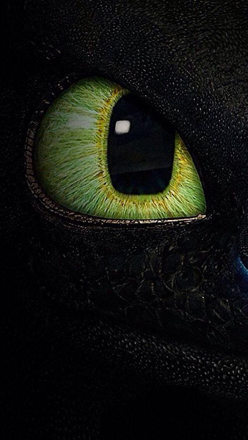 Imagem De Disney Papel De Parede Dragao Banguela Dragao