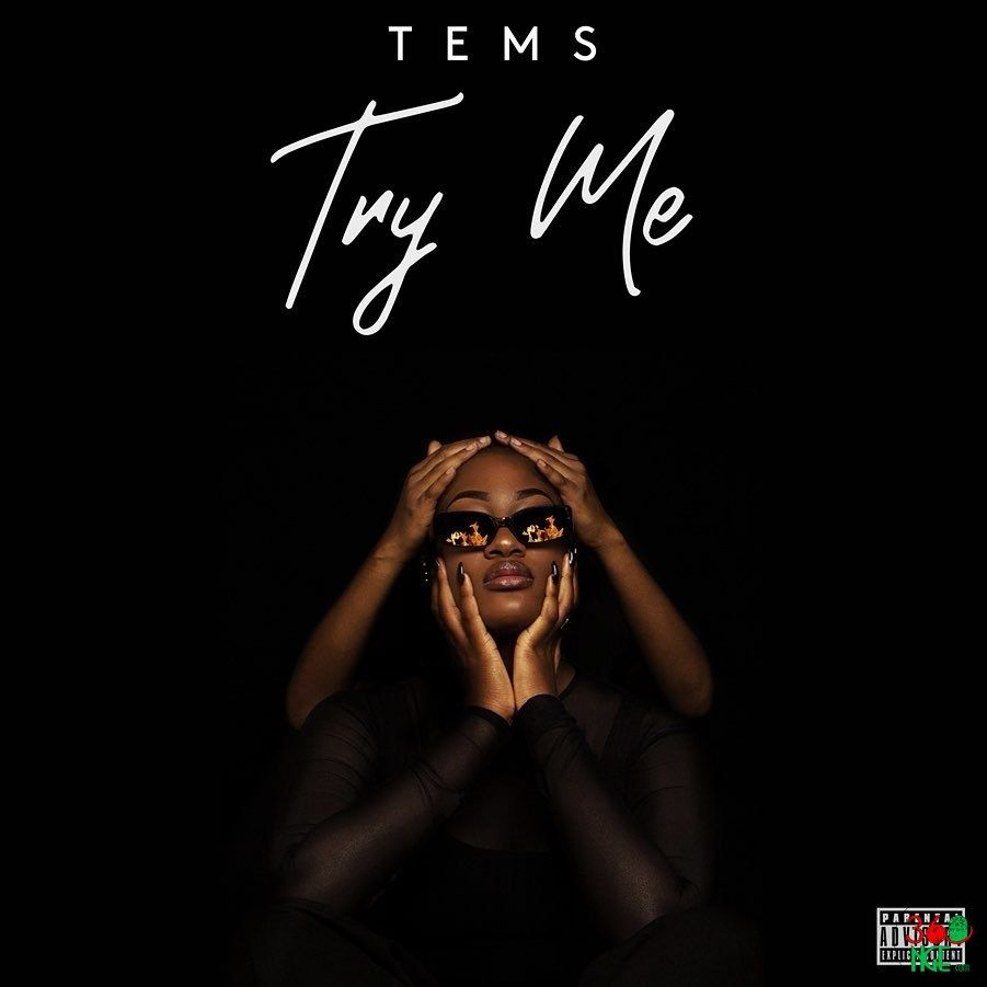 Mp3 Tems Try Me Songs Singer Me Too Lyrics