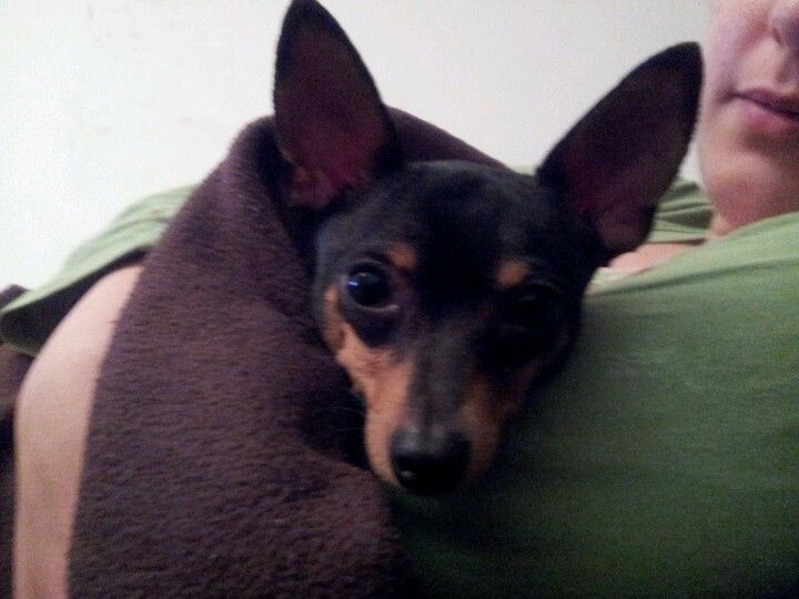 Sleepy Martim Filipe