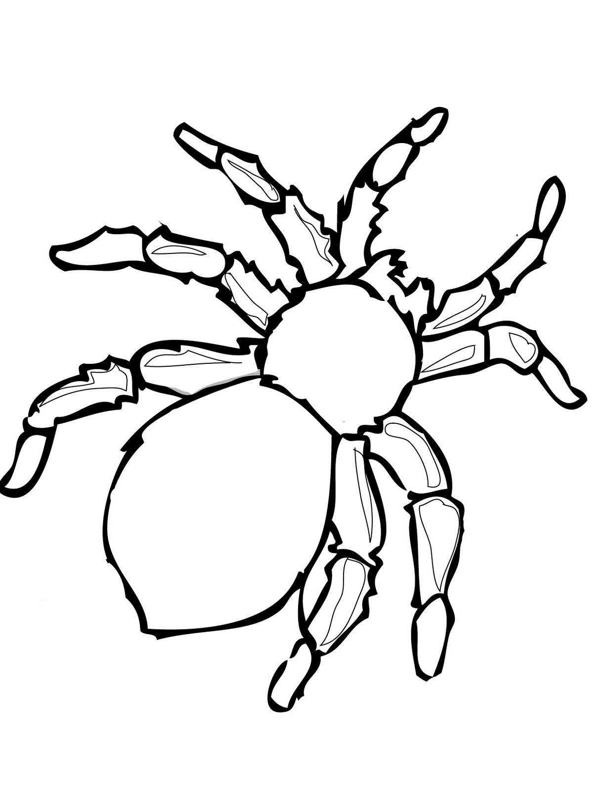 Printable Halloween Decoration Cutouts Spider Coloring Page