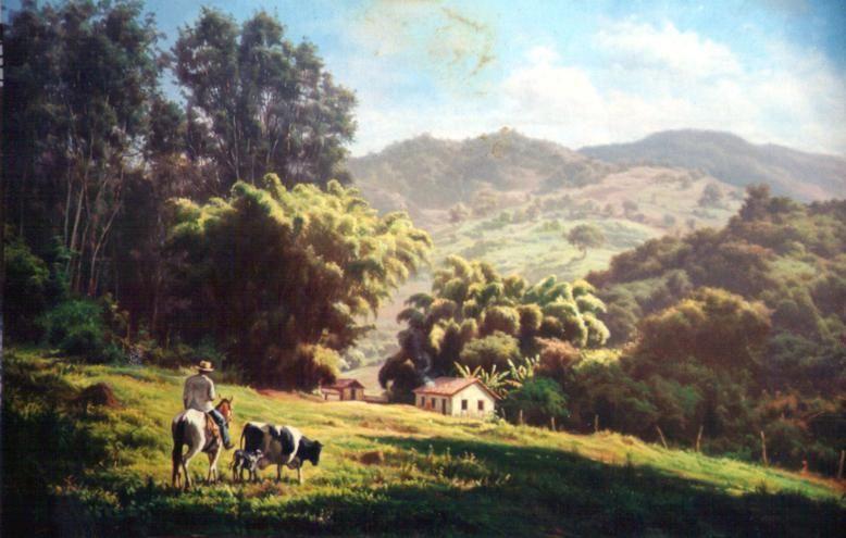Resultado de imagem para paisagens sertanejas