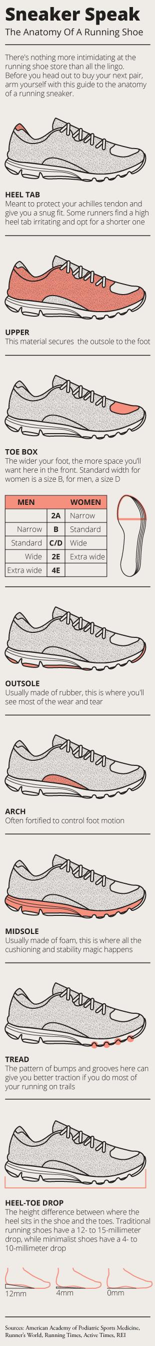 Dorable Running Shoe Anatomy Pictures - Anatomy Ideas - yunoki.info