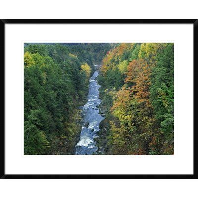 """Global Gallery Ottauquechee River and Quechee Gorge, Vermont by Tim Fitzharris Framed Photographic Print Size: 24"""" H x 30"""" W x 1.5"""" D"""