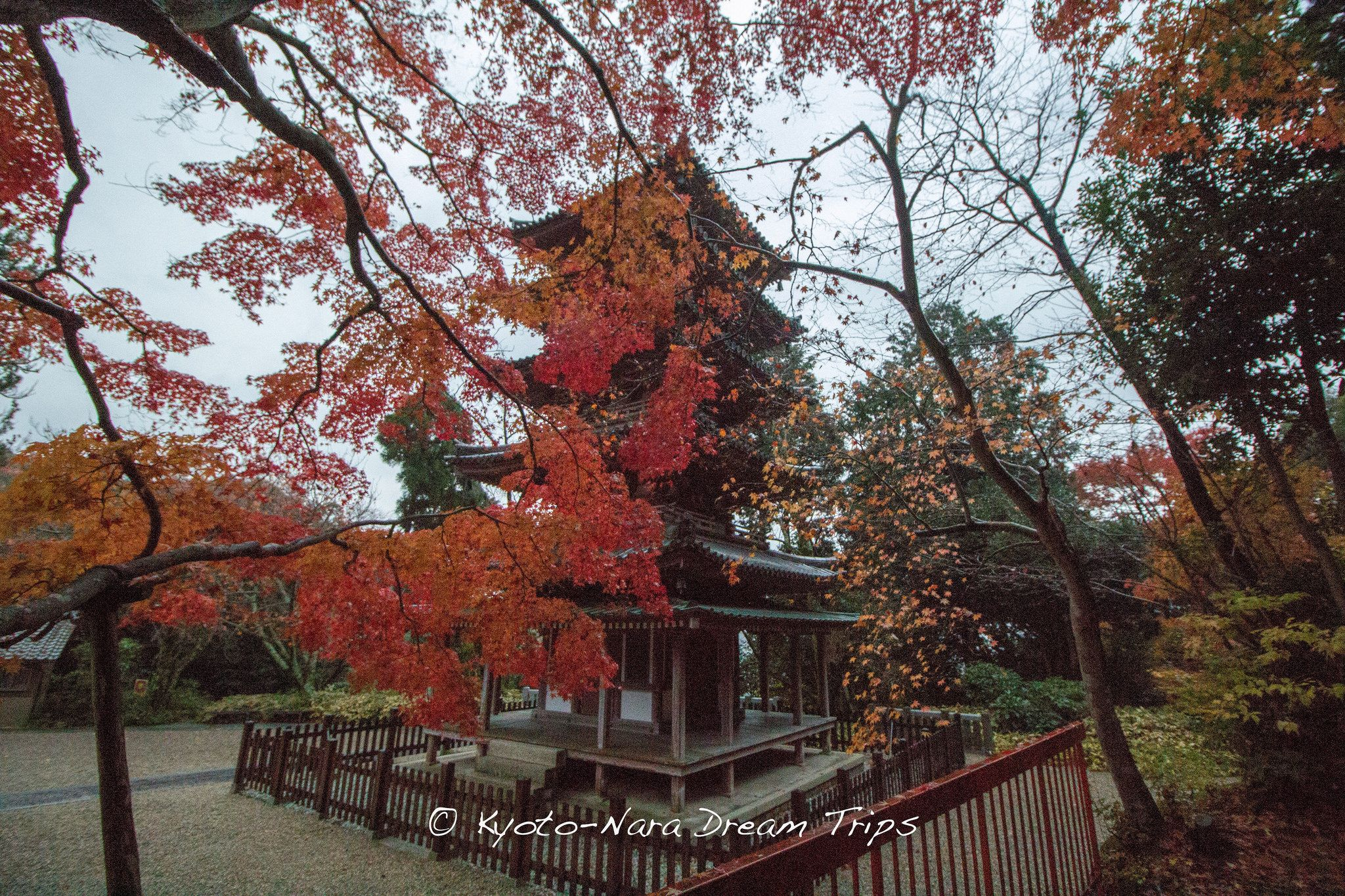 https://flic.kr/p/AoErK3 | Kaijūsen-ji, Autumn 2014, Kizugawa, Kyoto. | The Five-Storey Pagoda (五重塔-gojūnotō) of Kaijūsen-ji, during the autumn of 2014, in Kizugawa, Kyoto-fu. The pagoda dates back to the early Kamakura period (鎌倉時代; 1185–1333) and is classified as a national treasure of Japan.